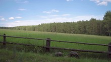 Manual Shooting Of A Meadow On An Incline. The Meadow Is Fenced Off The Road. In The Background Is A Forest.