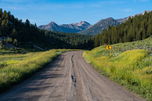 A Dirt Road With A Yellow Curved Road Sign Curves  Through Wildflowers Towards High Mountain Peaks In The Rocky Mountains Near Pagosa Springs, Colorado