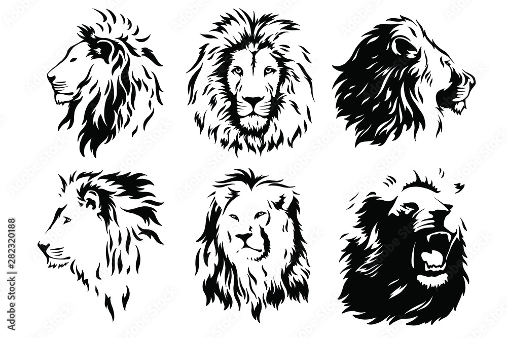 Fototapeta Lion Head Logo Vector Template Illustration Graphic Design