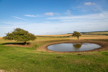 A Dew Pond On The Top Of Ditchling Beacon In Sussex, On A Sunny Summers Evening
