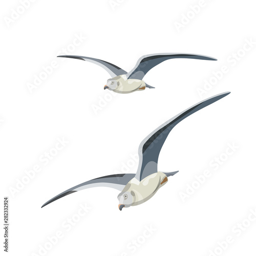 Flying seagulls vector Canvas-taulu