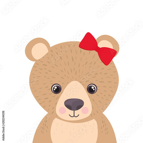 cute and adorable bear with frame