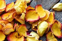 Dried Rose Petals Close Up