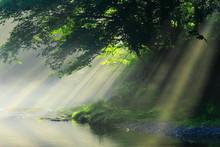 岩手県 夏の渓流