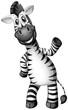Happy zebra on white background