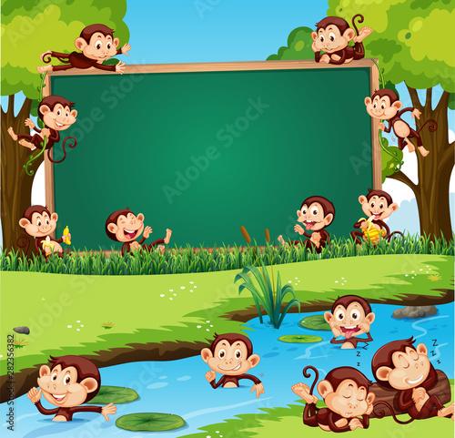 Foto auf Gartenposter Kinder Border template design with cute monkeys in the park