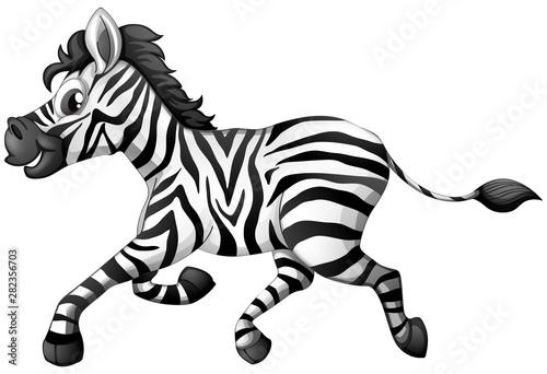 Photo Stands Kids Zebra running on white background