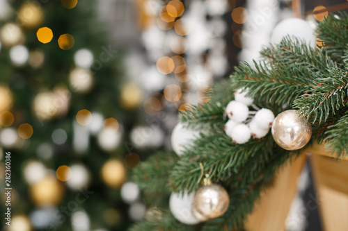 Photo Stands Roe Christmas tree background. New Year composition with spruce and lights