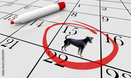 Fotografie, Obraz Dog Pet Animal Calendar Day Date Event Training Class 3d Illustration