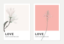 Minimalist Botanical Valentine Greeting Card Template Design, Anise Magnolia On Grey And Peacock On Pink