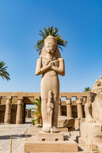 Statue Of Ramses The Great (Ra...