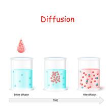 Diffusion Process. Laboratory ...