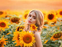 A Young Blonde Woman Stands In A Field With Blooming Sunflowers And Hugs A Bouquet Of Flowers. Field Mermaid At Dawn. Background Yellow Field And Fiery Sunset. Photo With The Addition Of Grain.
