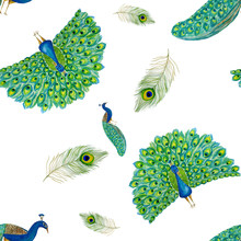 Watercolor Hand Drawn Seamless Pattern With Bright Peacock