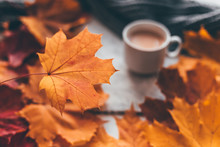 Autumn Home Cozy Composition A Cup Of Coffee With Maple Leaves.Selective Soft Focus
