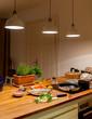 Küche mit Holz Arbeitsplatte, frische Zutaten für das Abendessen neben dem Herd, Fische, Möhren, Kräuter, Butter, Zitrone