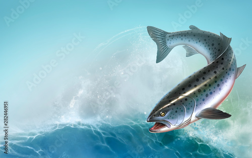 Rainbow trout fish on white background. Chinook Salmon, Salmon, Snout fish big realistic isolated illustration. Atlantic trout. Summer sea waves background.