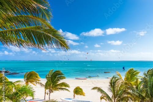 palm trees on the beach of Mourouk, Rodrigues Island