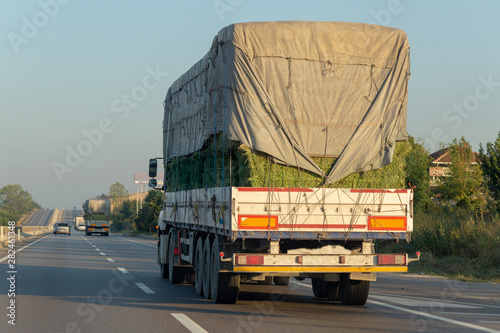 Fotomural  Rear view of two logistics trucks going on highway traffic with a load of green straw bales closed with a tent