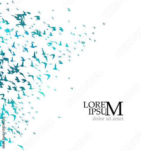 A flock of flying bluebirds. Vector illustration Fototapet