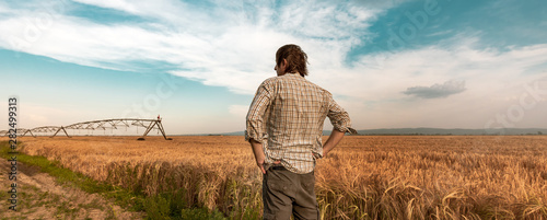 Worried farmer in barley field on a windy day Canvas