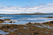 Bay With Low Tide, Seaweeds An...