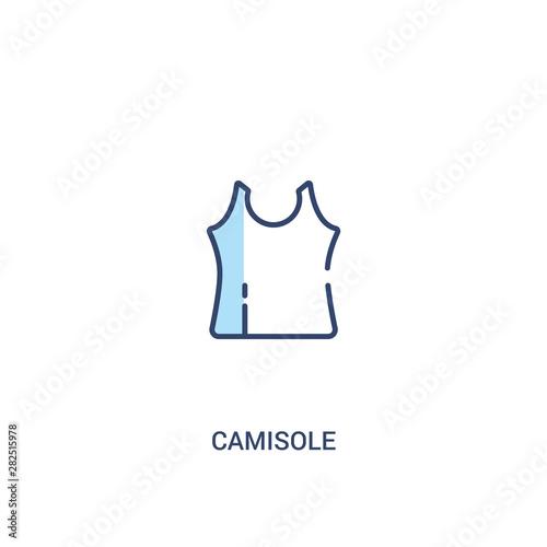 Fotografia, Obraz camisole concept 2 colored icon