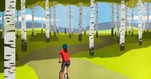 Woman Mountain Biking On Path Through Trees In Idyllic Forest