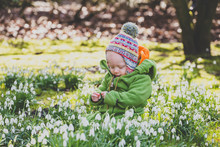 Baby Girl Sitting On A Meadow Covered With Snowdrops