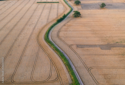 Türaufkleber Landschaft Ripe Golden Wheat Fields Aerial