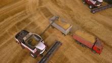 Combine Harvester Unloaded Corn Grains In Truck, Breathtaking Aerial View.