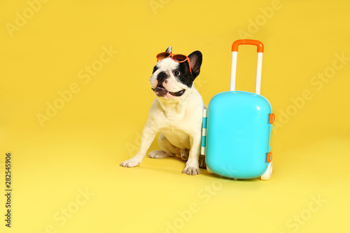 French bulldog with sunglasses and little suitcase on yellow background Canvas Print