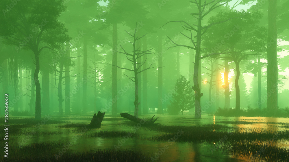 Fototapety, obrazy: Magical sunset in a dark swampy night forest
