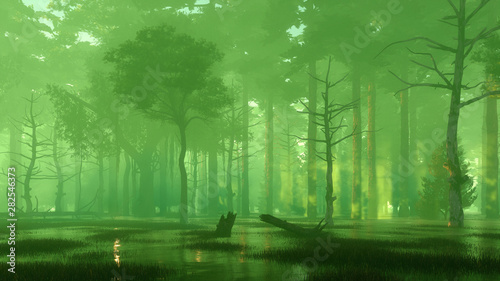 Photo sur Aluminium Olive Scary mysterious forest swamp at misty night