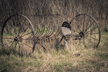 Vintage Horse-Drawn Hay Rake