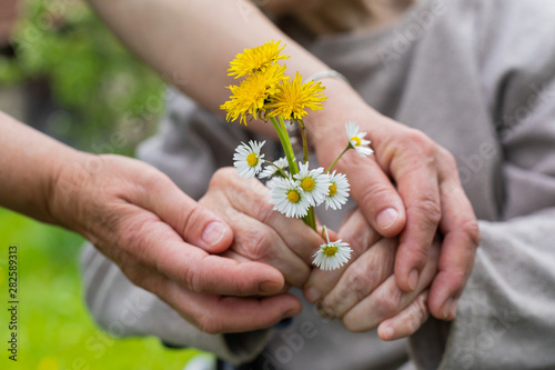 Photo Elderly care - hands, bouquet