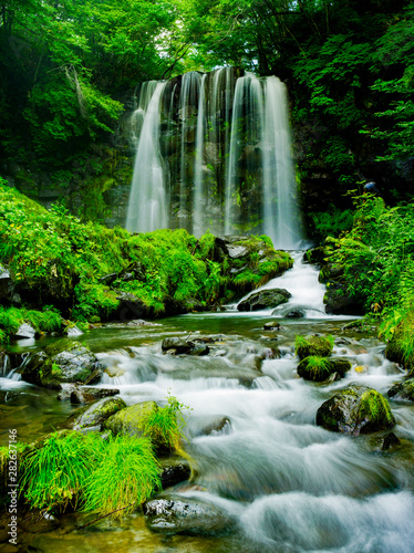 Printed kitchen splashbacks Forest river Beautiful Fall in Japan