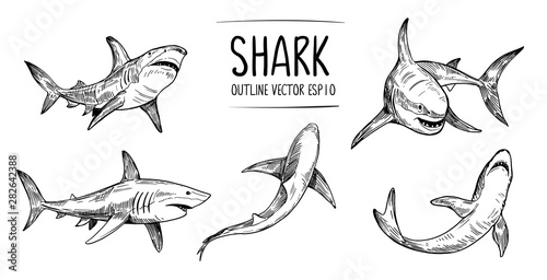 Set of  shark sketches Tablou Canvas