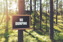 No Dumping Sign Hanging On Tree In Forest