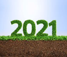 2021 Green Ecology Year Concept