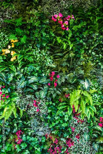 vertical plastic trees garden closeup Wall mural