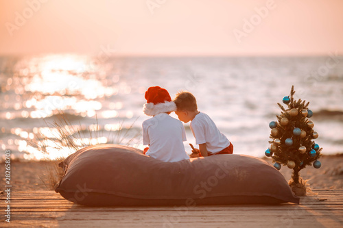 Photo Two little boys on the beach at Christmas with a New Year tree.