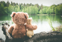True Friends, Bunny And Teddy Bear Are Sitting Side By Side At Lake, Dreaming And Remembering. Look Forward. Back View