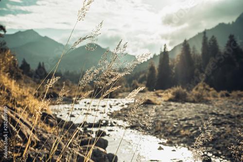 Montage in der Fensternische Grau Verkehrs Berglandschaft und Wildbach