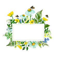 Watercolor Wild Flowers Frame. Hand Painted Delicate Meadow Yellow And Blue Flowers And Green Herbs With Flying Bees. Daisy, Buttercup, Mouse Peas, Queen Anne's Lace, Forget Me Not, Leaves, Foliage.