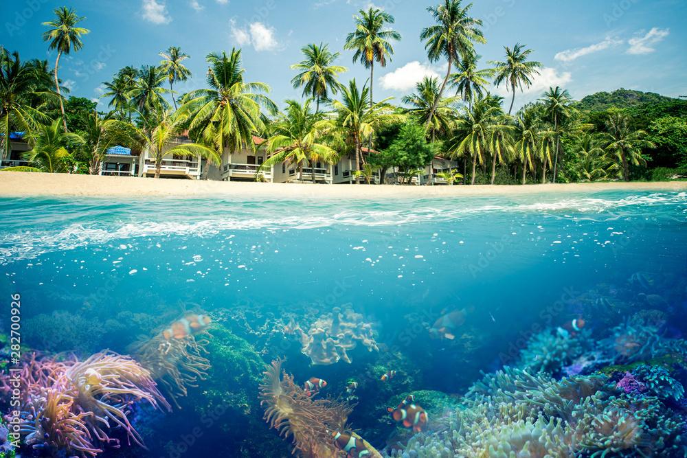 Fototapeta Paradiesischer Strand mit Korallen Riff
