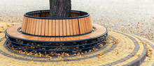 Modern Wooden Circle Shaped Be...