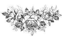 Hand Drawn Rose  Flowers Bunch