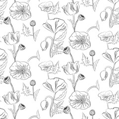 Poppies flowers vector seamless pattern.