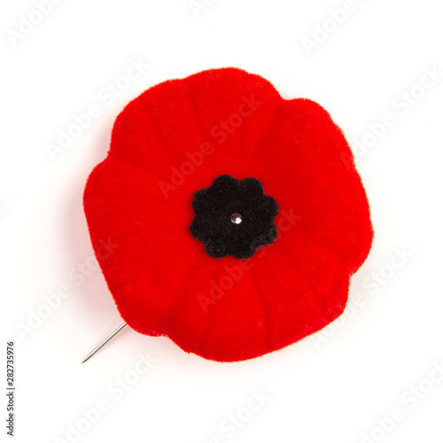 Canvas Prints Poppy Remembrance Day Poppy